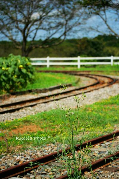 rail_2.jpg